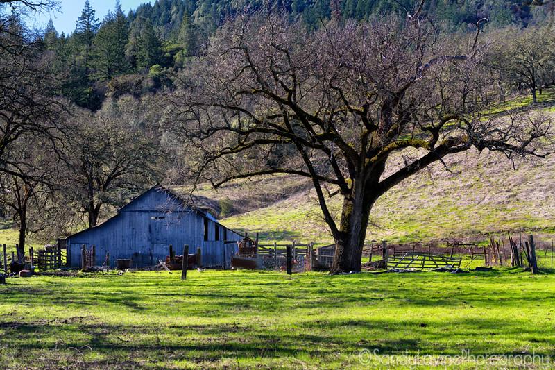 Pope Valley Farm