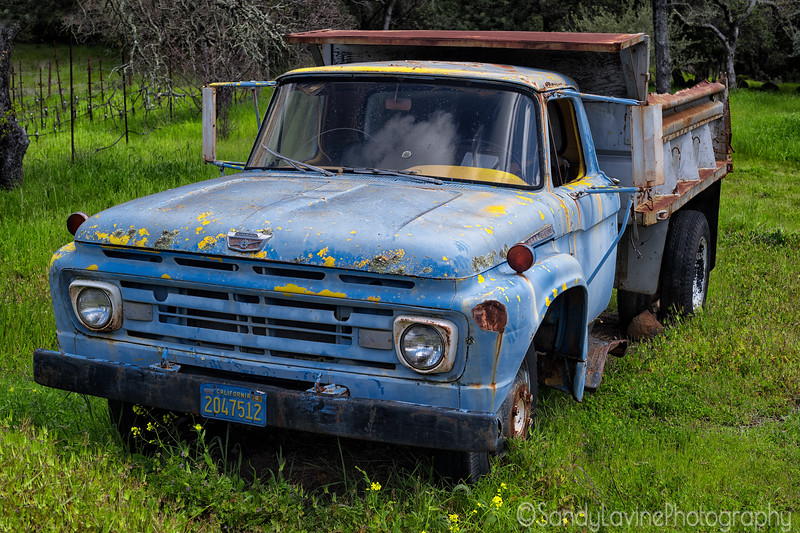 Ford F600 in a field