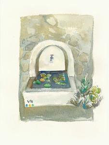 No 224 Un étang dans une fontaine