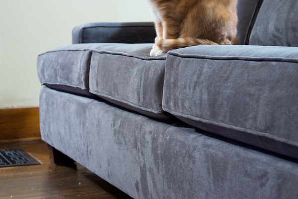 February 4,  2013 :: 35/365<br /> The new couch finally came today.  Once we get the chair and ottoman I'll share the rest of the story.