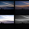 January 26,  2013 :: 26/365<br /> The sunset tonight wasn't as exciting as I was hoping.  I started messing around with this image and now I can't decide which one I like, so I decided to post 4 versions. I'm guessing most people will like the top right version the most.  In other news, I decided not to waste the 50 degree weather and it is no longer Christmas at our house.