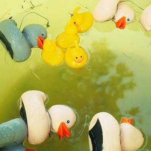 Fuzzy Duck - day#216 - year#05