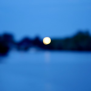 lune de rivage - day#113 - year#06