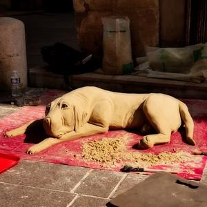 Busking Dog - day#225 - year#05