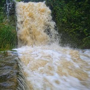 Sous la pluie vers la source du Suran - day#196 - year#08