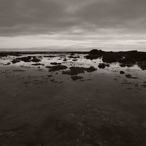 Seascape - day#232 - year#08