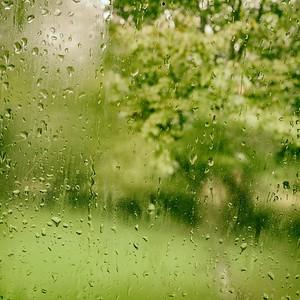 se réveiller en automne - day#262 - year#08