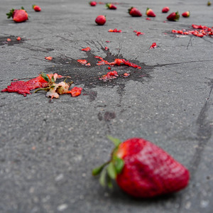 Strawberry Fields Forever - day#98 - year#05