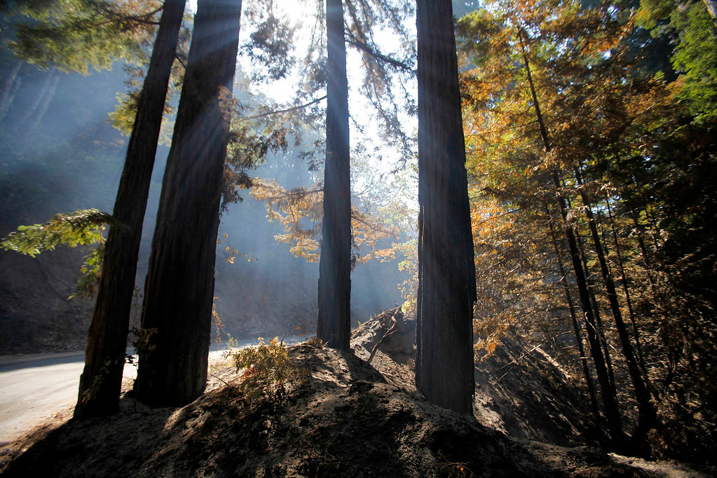 . The sun filtered through smoke in Palo Colorado Canyon on Saturday, August 6, 2016.  The Soberanes Fire is currently at 55,600 acres and has a 40% containment.  (Vern Fisher - Monterey Herald)