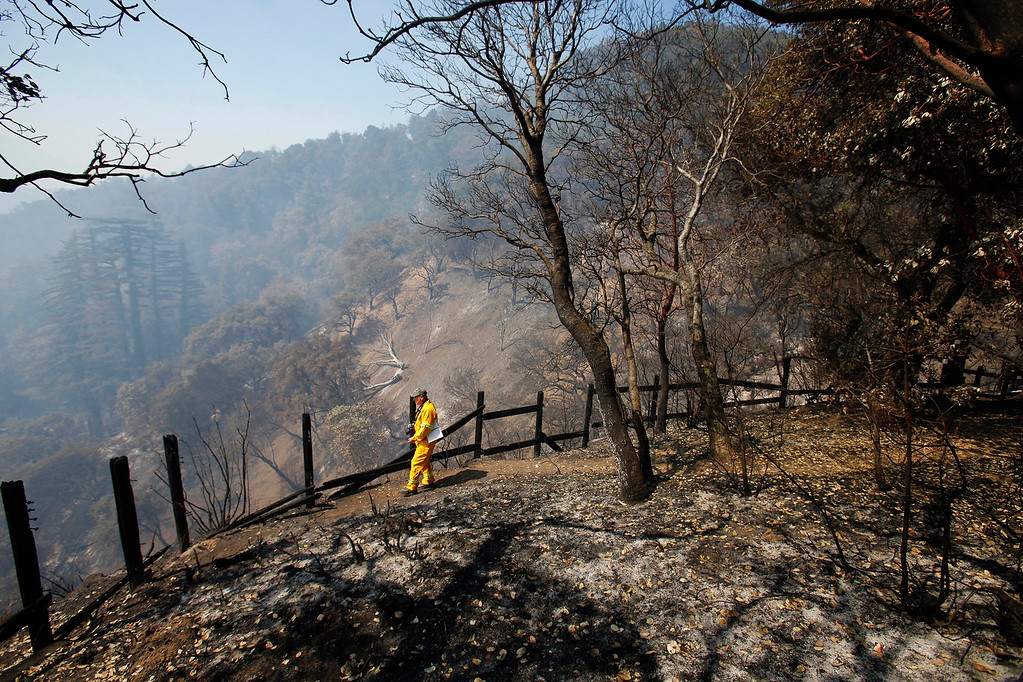 . A journalist walks through the burned area of Bottchers Gap in the Los Padres National Forest on Saturday, August 6, 2016.  The Soberanes Fire is currently at 55,600 acres and has a 40% containment.  (Vern Fisher - Monterey Herald)