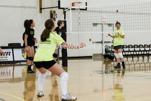Alumnae_Volleyball