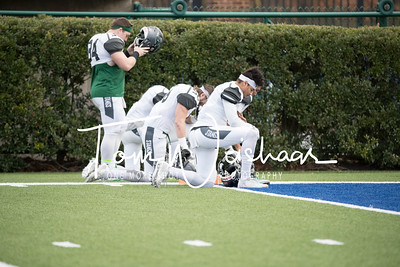 ECAC-2017-Clayton_Chapman_Bowl_Alfred University_vs_Stevenson_University-16