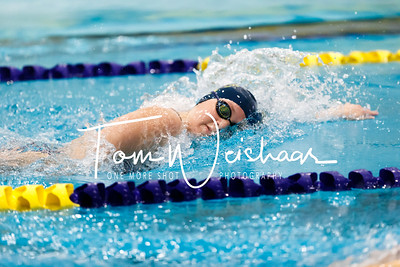 Widener_Swim_Meet_Dec_5_2015 (21 of 496)