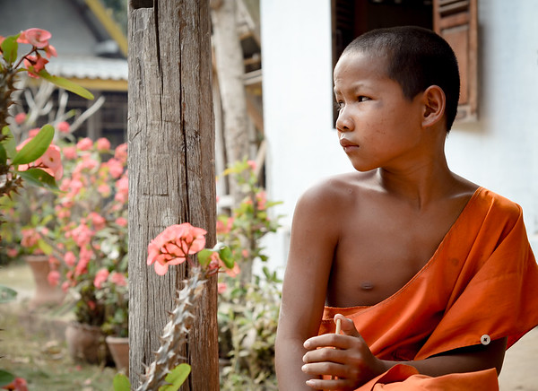 A novice monk. Luang Prabang, Laos. March 2017.