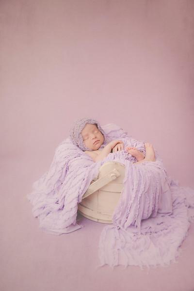 Ongaro Newborn
