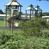A section of the planting with the playground behind it