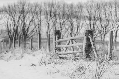 Snow Gate. Keith