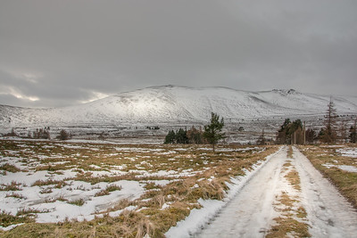 The farm track. Ben Rinnes