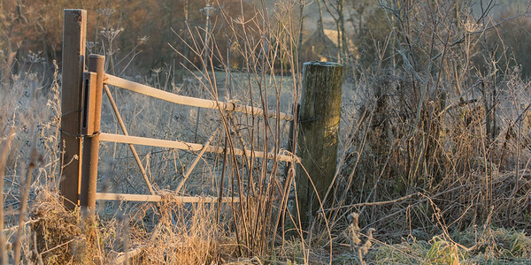 The park gate on the Low road at Rothienay