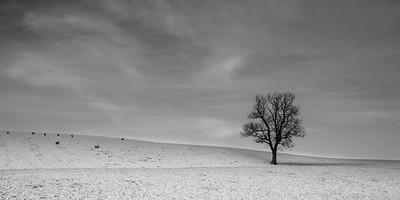 Winter around Keith b&w