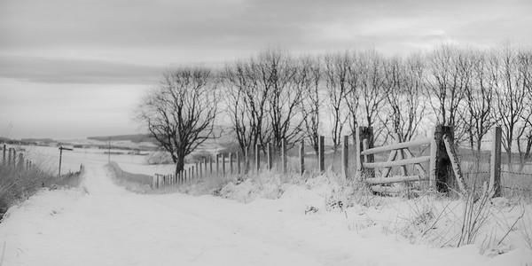 Greenroadies walk in winter snow. Keith