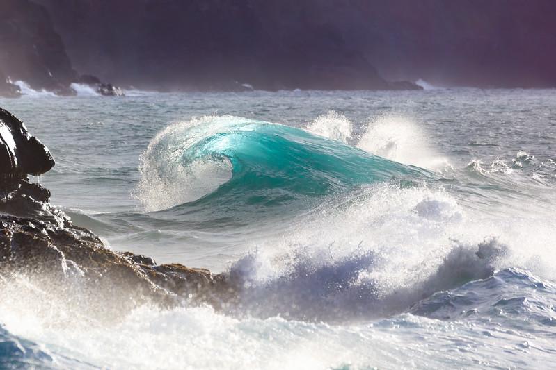 Na Pali Wave - Dolphin Dorsal Fin