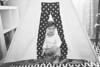 Dharamsi Newborn 2-13-2
