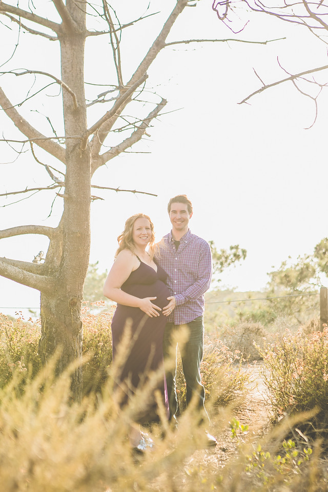 Francie and Alec Maternity 2013-2