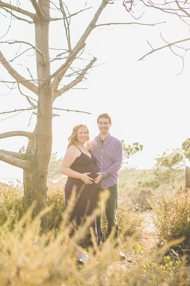 Francie and Alec Maternity 2013-2