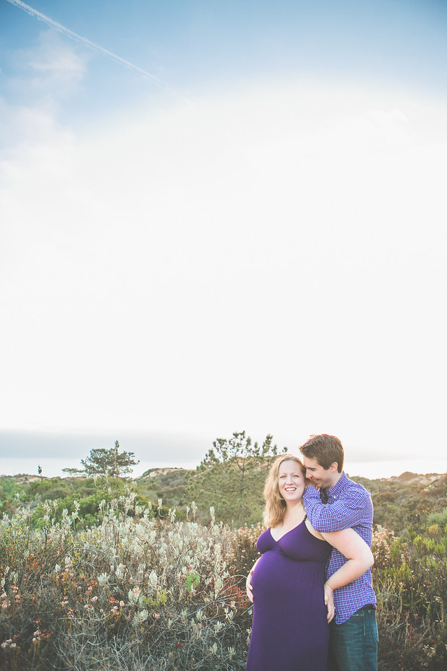 Francie and Alec Maternity 2013-39