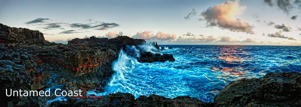 Untamed Coast
