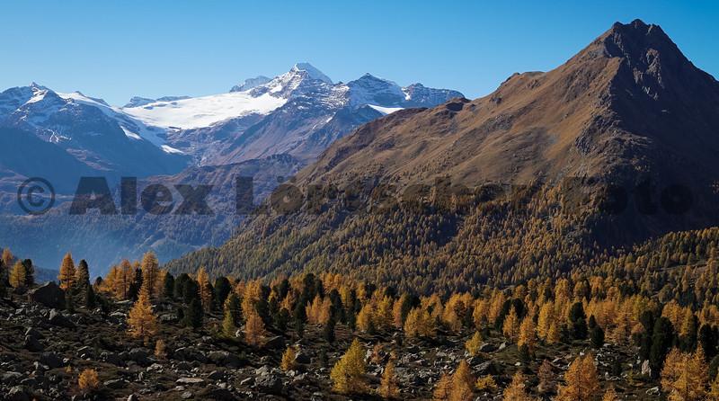 Wandern im Val di Campo