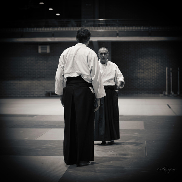 "Aikido course in Gasteiz (Basque Country) to fundraise for ""Bultzain"". This local NGO works with and on behalf of homeless people; but, because of the economic crisis, has difficulties to keep working."