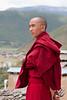 Buddish monk in Songzanlin Monastery (Shangri La)