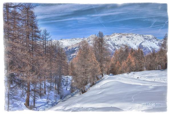 Mountain Sweet Mountain