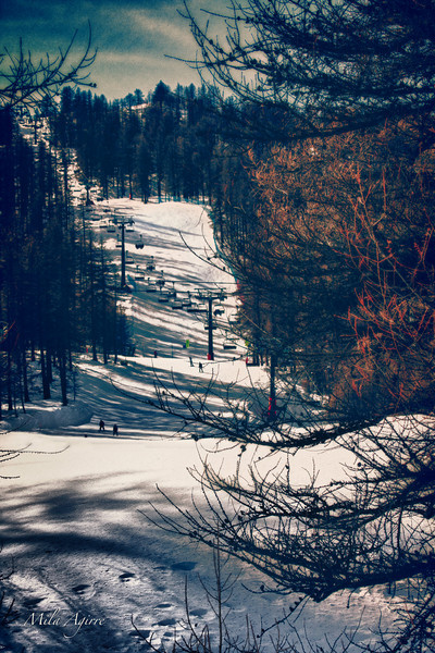 In the evening, the trees whisper to the chairlifts