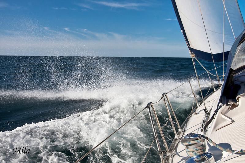 "Photo taken aboard Delfos I<br /> <br /> <a href=""http://www.bilbokosta.com/"">http://www.bilbokosta.com/</a>"
