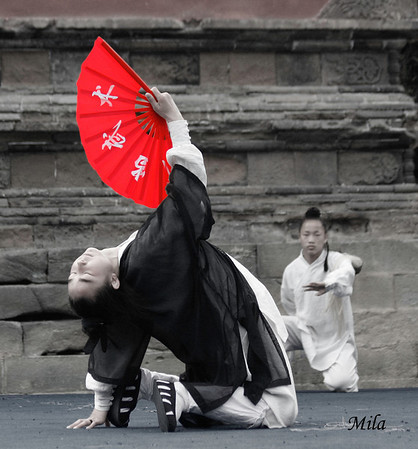 Taichi exhibition in Wudang Mountain