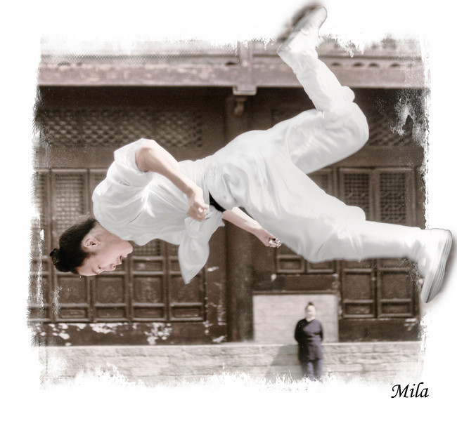 Taichi exhibition in the Purple Cloud Temple (Wudang mountain)