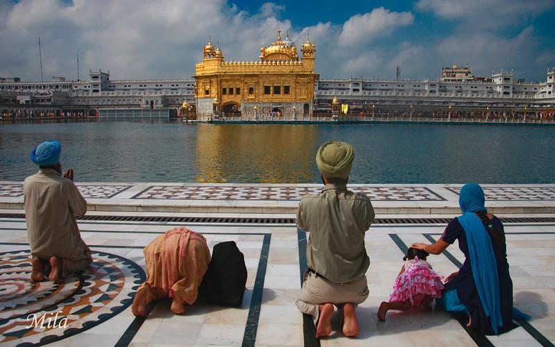 The Golden Temple (Amritsar)
