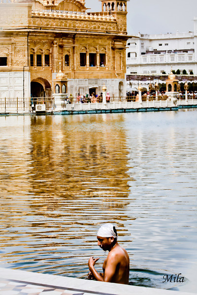 The Golden Temple (Amritsar)