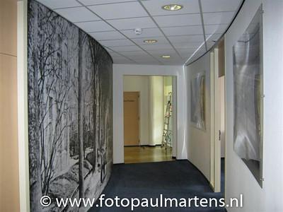paulm20100316--2