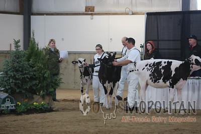 Ontario Spring Holstein 2016
