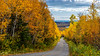 Fall foliage color on the roads  near Quimet Canyon, Ontario, Canada.