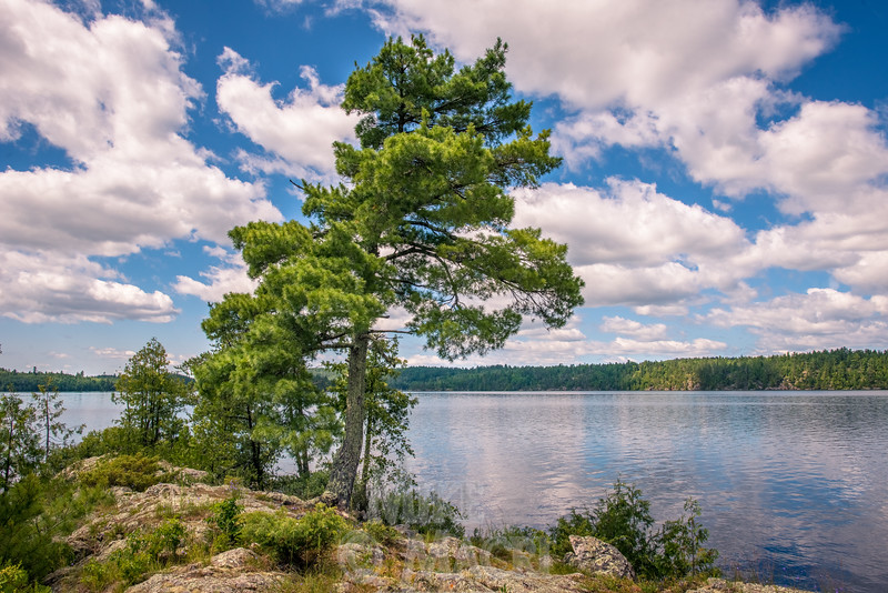 Ontario lake, Bad Vermilion