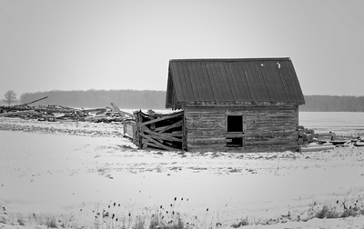 Abandoned Out Building, Lambton County Ont