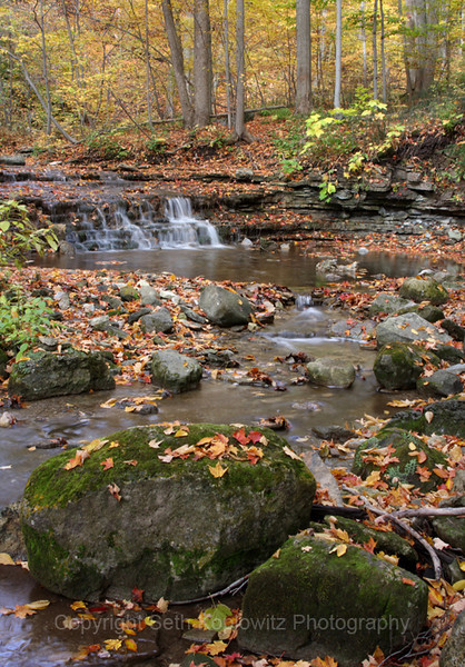 Silvercreek Stream – Autumn (2010)