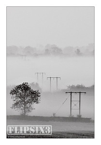 Telephone lines stretching into early morning mist - Kibworth