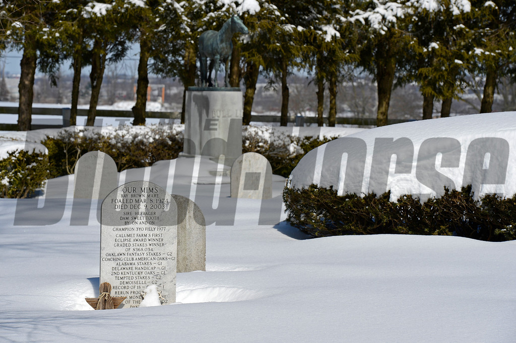 Our Mims gravestone foreground, Bull Lea background.<br /> Stallions and cemetery scenes at Calumet Farm on March 6, 2015, in Lexington, Ky.<br /> StallionsCemetery 3_6_15 image466<br /> Photo by Anne M. Eberhardt