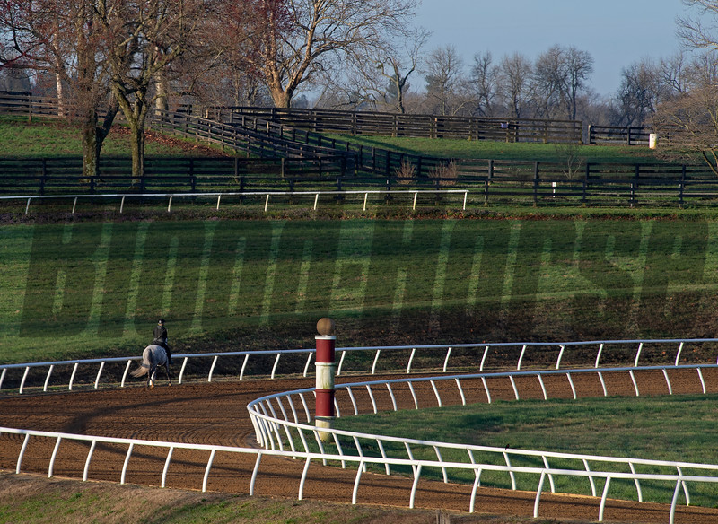 Horse training at Blackwood Stables on<br /> March 26, 2020  in Versailles, KY.